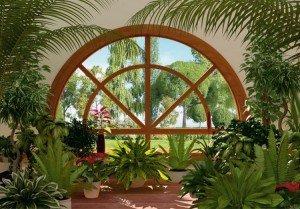 pièce-plantes-vertes-jardin-hiver-maison-lumière